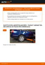 Cómo cambiar: amortiguadores de la parte trasera - VW Passat 3C B6 Variant   Guía de sustitución
