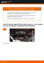 Cambio Kit ammortizzatori posteriore e anteriore VW da soli - manuale online pdf