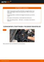 Mekanikerens anbefalinger om bytte av VW Polo 9n 1.2 12V Bremseskiver