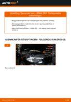 Bytte Glødelampe Nummerskiltlys BMW E39 Touring: handleiding pdf