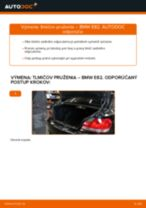 Montáž Tlmiče perovania BMW 1 Coupe (E82) - krok za krokom príručky