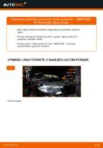 Vymeniť Tlmiče perovania BMW 1 SERIES: zadarmo pdf