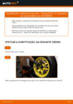 Recomendações do mecânico de automóveis sobre a substituição de RENAULT Renault Clio 3 1.2 16V Discos de Travão