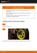Kada reikia keisti Guolis, rato guolio korpusas RENAULT CLIO III (BR0/1, CR0/1): pdf vadovas