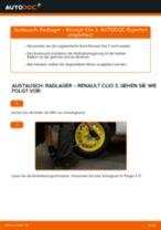 Anleitung: Renault Clio 3 Radlager hinten wechseln