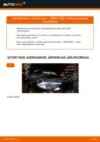 Online tasuta juhised kuidas vahetada Amort BMW 1 Coupe (E82)