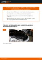 Schritt-für-Schritt-PDF-Tutorial zum Fensterheber-Austausch beim Fiat Punto 199