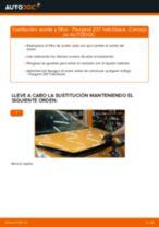 Guía de reparación paso a paso para 308 I SW (4E, 4H) 2009