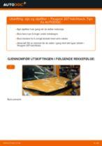 Når skifte Oljefilter PEUGEOT 207 (WA_, WC_): pdf håndbok