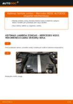 Kaip pakeisti ir sureguliuoti Lambda jutiklis: nemokamas pdf vadovas