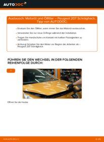 Wie der Ersatz vollführt wird: Ölfilter am PEUGEOT 207