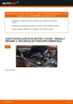 Cambio Cadena de Distribución BMW X1: guía pdf