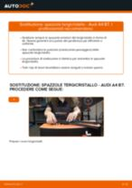 Come cambiare spazzole tergicristallo della parte anteriore su Audi A4 B7 - Guida alla sostituzione