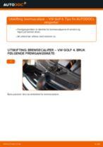 Bytte Blinklyspære BMW gjør-det-selv - manualer pdf på nett