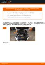 Recomendações do mecânico de automóveis sobre a substituição de PEUGEOT PEUGEOT 207 (WA_, WC_) 1.6 HDi Tirante da Barra Estabilizadora