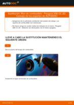 Tutorial de reparación y mantenimiento de PEUGEOT 308 I SW (4E, 4H) 2010