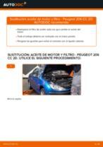 Peugeot 308 SW 1.6 Bioflex manual de solución de problemas