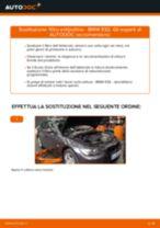 Impara a risolvere il problema con Filtro Antipolline BMW