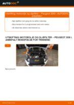 Mekanikerens anbefalinger om bytte av PEUGEOT PEUGEOT 207 (WA_, WC_) 1.6 HDi Stabilisatorstag