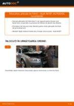 Cum se înlocuiesc și se ajustează Placute Frana AUDI A4: manual pdf