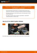Montare Placute Frana AUDI A4 (8EC, B7) - tutoriale pas cu pas