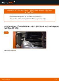 Wie der Wechsel durchführt wird: Zündkerzen 1.9 CDTI (M75) Opel Zafira B tauschen