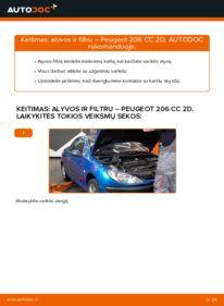 Kaip atlikti keitimą: 1.6 16V Peugeot 206 cc 2d Alyvos filtras