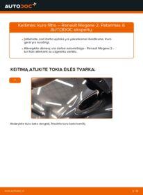 Kaip atlikti keitimą: 1.6 RENAULT MEGANE II Saloon (LM0/1_) Kuro filtras