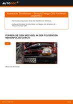 Wie Seitenmarkierungsleuchte dynamische beim SEAT EXEO wechseln - Handbuch online