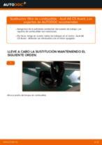 Cómo cambiar: filtro de combustible - Audi A6 C5 Avant | Guía de sustitución