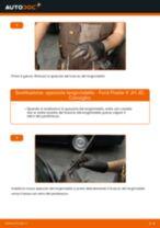 Come cambiare spazzole tergicristallo della parte posteriore su Ford Fiesta V JH JD - Guida alla sostituzione