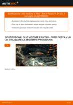 Le raccomandazioni dei meccanici delle auto sulla sostituzione di Filtro Carburante FORD Ford Fiesta Mk6 1.4 TDCi