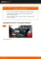 Byta gasfjäder baklucka på Audi A6 C5 Avant – utbytesguide