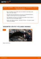 Manuell PDF för A6 underhåll