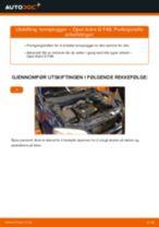 Mekanikerens anbefalinger om bytte av OPEL Opel Corsa D 1.2 (L08, L68) Drivstoffilter