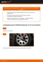 Jak wymienić amortyzator tył w Audi A6 C5 Avant - poradnik naprawy