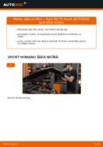 Kā nomainīt un noregulēt Eļļas filtrs AUDI A6: pdf ceļvedis