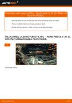 Manual de reparație FORD FUSION - instrucțiuni pas cu pas și tutoriale