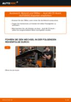 MG MGB Bremssattel wechseln rechts und links Anleitung pdf