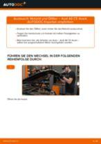 Hochwertige Kfz-Reparaturanweisung für Ersatz Motorölfilter AUDI
