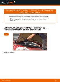 Πώς να πραγματοποιήσετε αντικατάσταση: Μπουζί σε 1.4 HDi CITROËN C3 I (FC_)