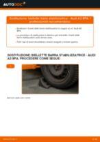 Cambiare Biellette Barra Stabilizzatrice AUDI A3: manuale tecnico d'officina