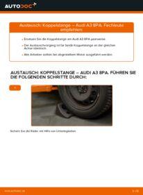 Wie der Wechsel durchführt wird: Koppelstange 2.0 TDI 16V Audi A3 8pa tauschen