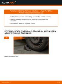 Kaip atlikti keitimą: 2.0 TDI 16V Audi A3 8pa Pasukimo trauklė