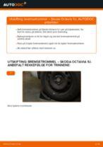 Oppdag den detaljerte veiledningen om hvordan fikse SKODA Bremsetrommel foran og bak problemet