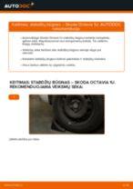 Automechanikų rekomendacijos SKODA Octavia 1z5 1.6 TDI Stabdžių diskas keitimui