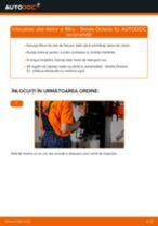Cum să schimbați: ulei motor și filtru la Skoda Octavia 1U | Ghid de înlocuire
