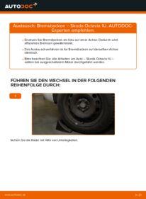 Wie der Wechsel durchführt wird: Bremsbacken 1.9 TDI Skoda Octavia 1u tauschen
