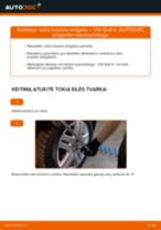HONDA INSIGHT Uždegimo ritė pakeisti: žinynai pdf