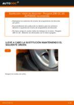 Cómo cambiar: rótula de dirección - Peugeot 206 CC 2D | Guía de sustitución